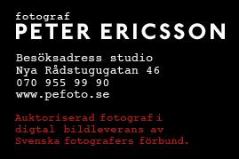 D2CAA9FD-EE75-4324-81F5-6C901E369185[40]